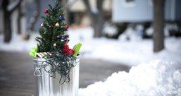 Christmas tree curb